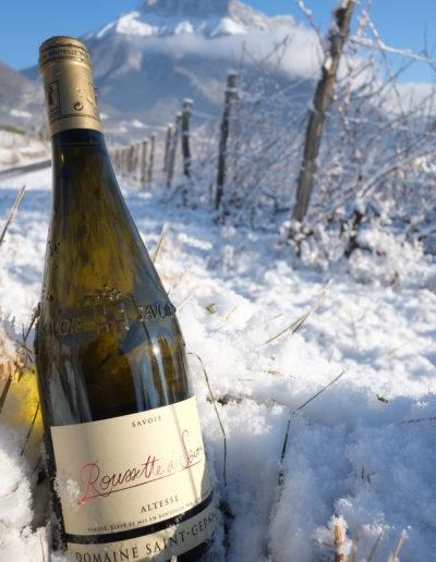 Bouteille de Roussette de Savoie devant une parcelle de vigne, sous la dent d'Arclusaz, Domaine Saint-Germain, vin biologique en Savoie, Saint-Pierre d'Albigny
