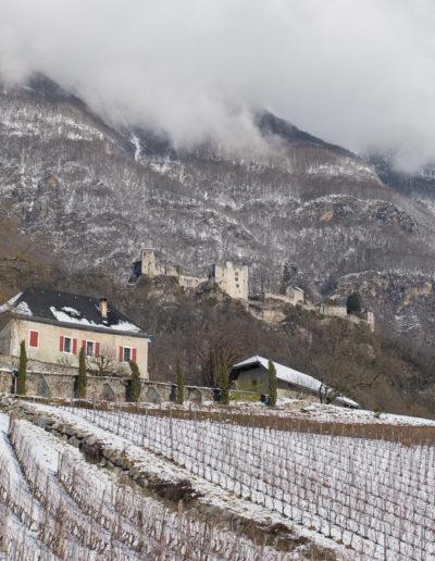 Domaine Saint-Germain, vin bio en Savoie : lieu dit La Perrouse, sous le Château de Miolans, Saint-Pierre d'Albigny